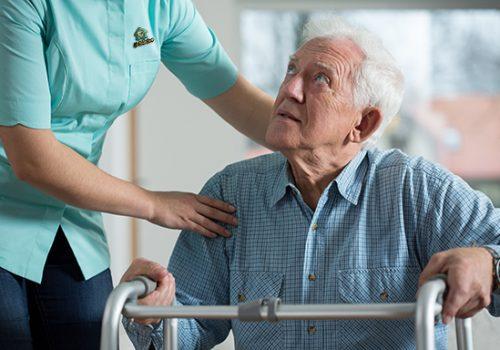 la belle care services